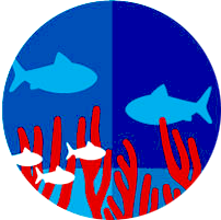 marinesciencelab